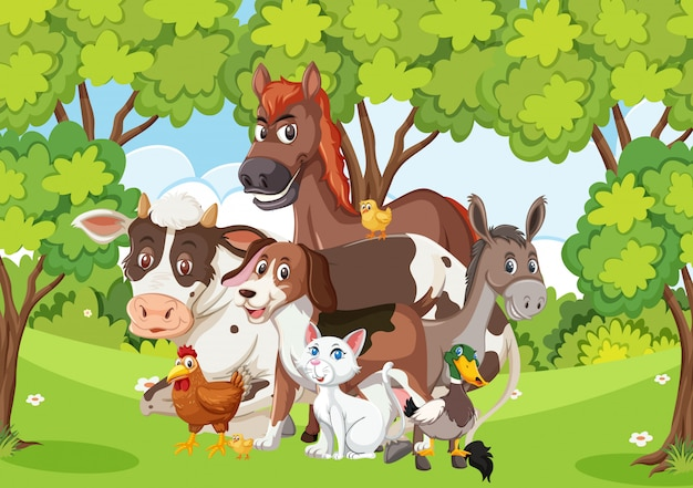 Scène avec de nombreux animaux sauvages dans la forêt