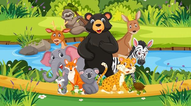 Scène avec de nombreux animaux sauvages dans le parc