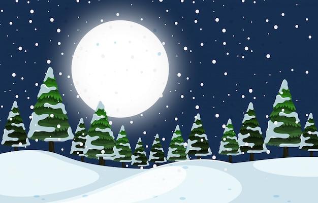 Une scène de nuit en plein air en hiver