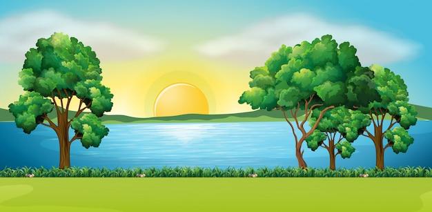Scène de parc au coucher du soleil