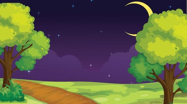 Scène de parc de nuit