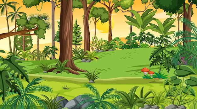 Scène de paysage forestier au coucher du soleil avec de nombreux arbres différents