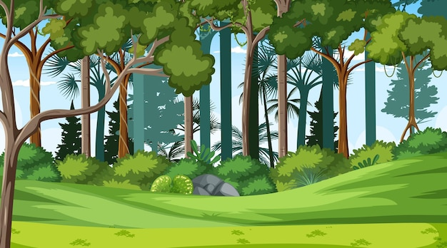 Scène de paysage forestier au moment de la journée avec de nombreux arbres différents