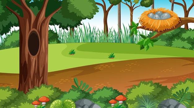 Scène de paysage forestier pendant la journée