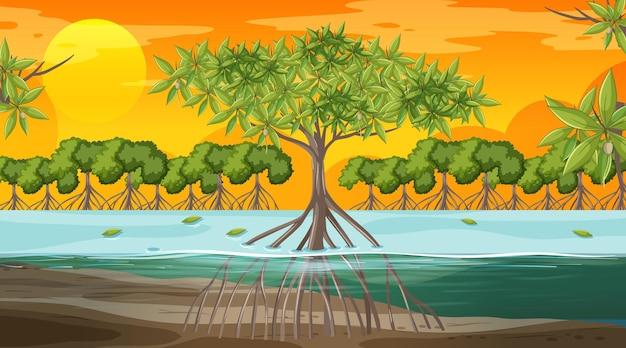 Scène de paysage de forêt de mangrove au coucher du soleil