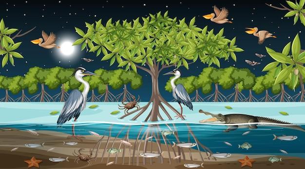 Scène de paysage de forêt de mangrove la nuit avec de nombreux animaux différents