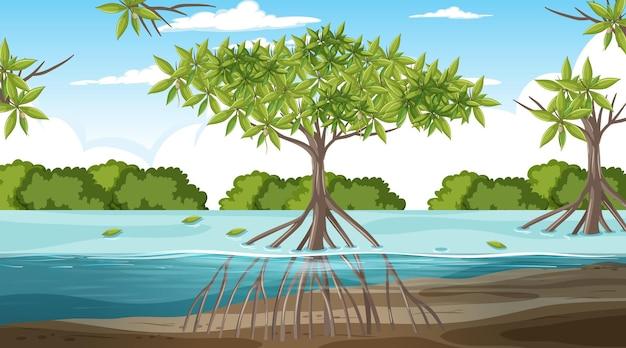 Scène de paysage de forêt de mangrove pendant la journée
