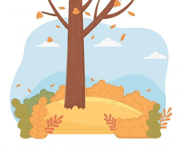 Scène de paysage de forêt saison d'automne