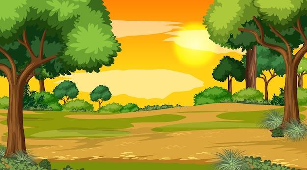 Scène De Paysage Vierge Du Parc Naturel Au Coucher Du Soleil Vecteur gratuit