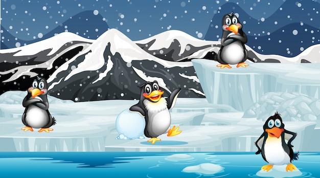 Scène avec des pingouins sur la glace
