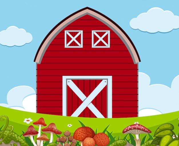 Une scène en plein air avec une grange