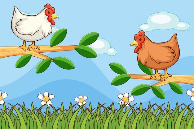 Scène avec des poulets dans le jardin