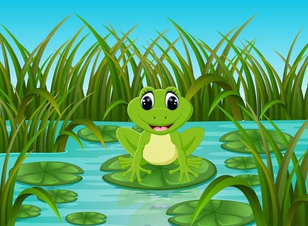 Scène de la rivière avec une grenouille heureuse sur la feuille