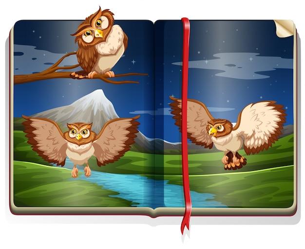 Scène de la rivière avec trois hiboux dans le livre