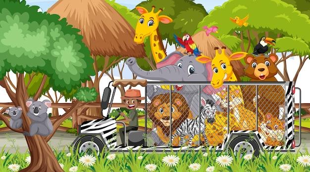 Scène de safari avec des animaux sauvages dans la voiture-cage