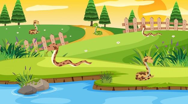 Scène avec des serpents rampant dans le parc