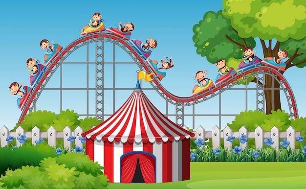 Scène avec des singes équitation roller coaster dans le parc au moment de la journée