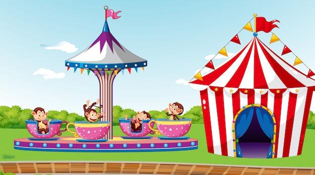 Scène avec des singes mignons à cheval sur la tasse en rotation dans le parc