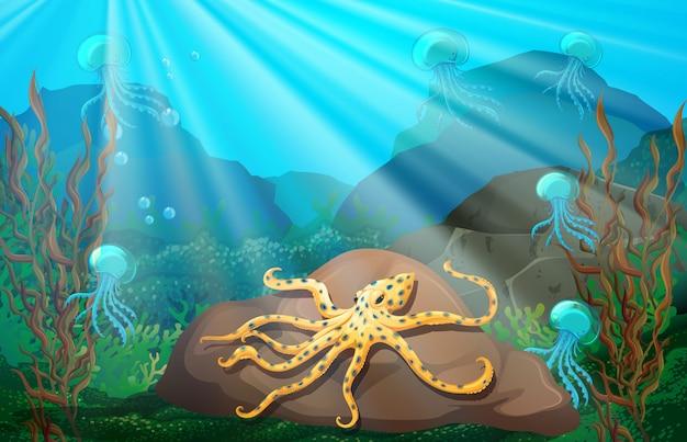Scène sous-marine avec calmar sur rocher