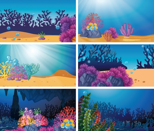 Scène sous-marine