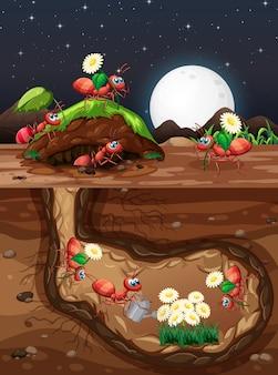 Scène souterraine avec des fourmis dans le trou la nuit