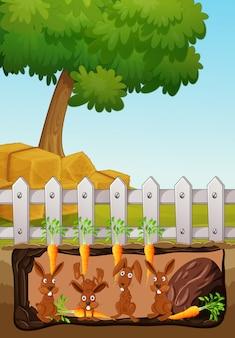 Scène souterraine avec des lapins