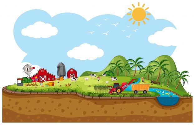 Scène de terres agricoles avec de nombreux animaux