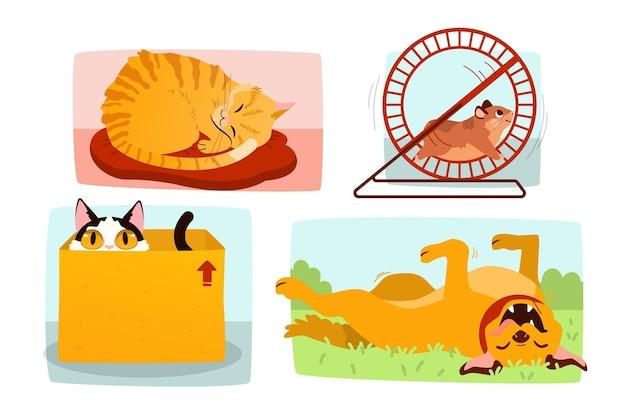 Scène de tous les jours avec des animaux domestiques