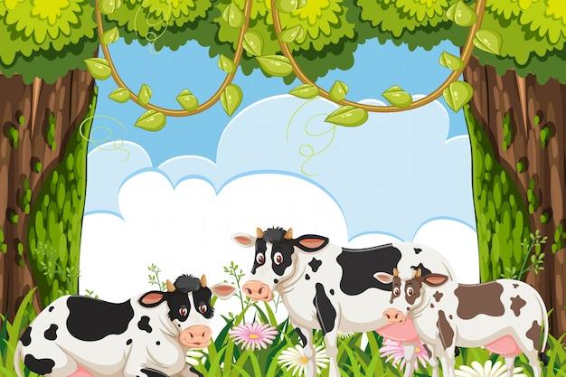 Scène de vaches dans les bois