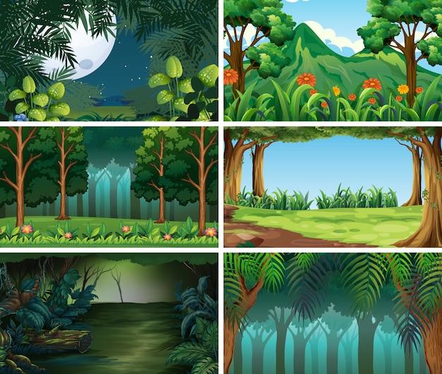 Scènes de nature de paysage