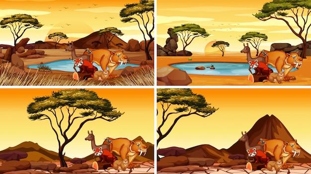 Scènes avec de nombreux animaux sur le terrain