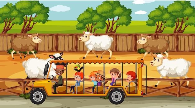 Scènes de safari avec de nombreux moutons et personnages de dessins animés pour enfants