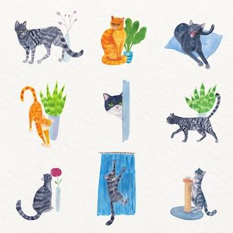 Scènes de tous les jours avec de beaux chats