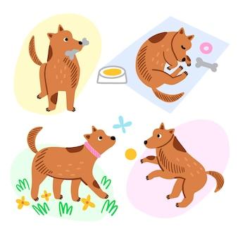 Scènes de tous les jours avec un chien mignon