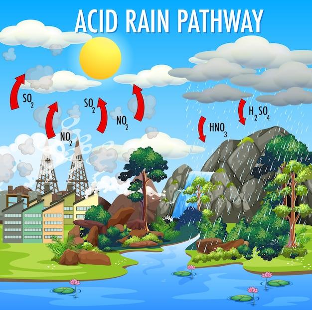 Schéma montrant la voie des pluies acides