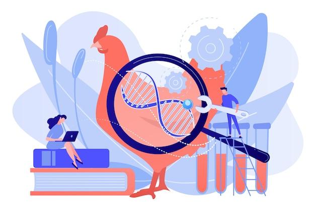 Des scientifiques travaillant avec un énorme adn d'un poulet. animaux génétiquement modifiés, concept d'expérimentation animale génétiquement modifié sur fond blanc. illustration isolée de bleu corail rose
