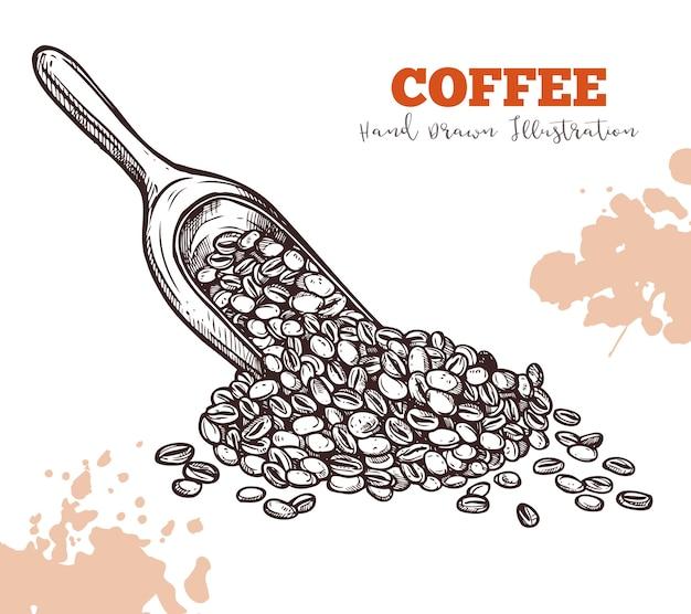 Scoop avec croquis de grains de café isolé sur blanc