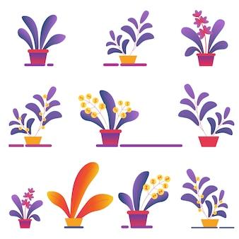 Seamless pattern of money homeplants grandissent dans des pots