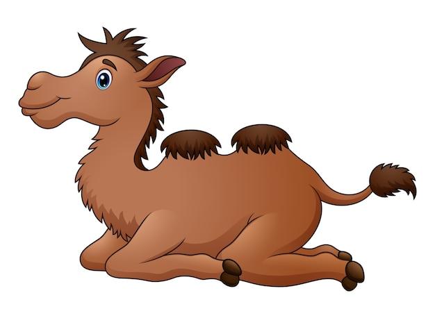 Séance de dessin animé mignon chameau
