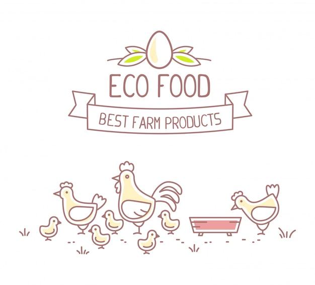 Secteur agroalimentaire. illustration de la vie de ferme de poulet avec économie naturelle sur fond blanc. concept alimentaire écologique. meilleur produit de la ferme.
