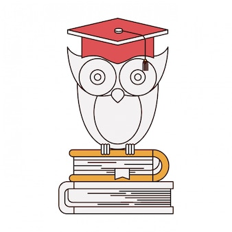Sections de couleur de silhouette de la connaissance de hibou avec la graduation de chapeau sur la pile de livres