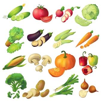Seize icônes de légumes mûrs de dessin animé réaliste isolés mis colorés avec des tranches