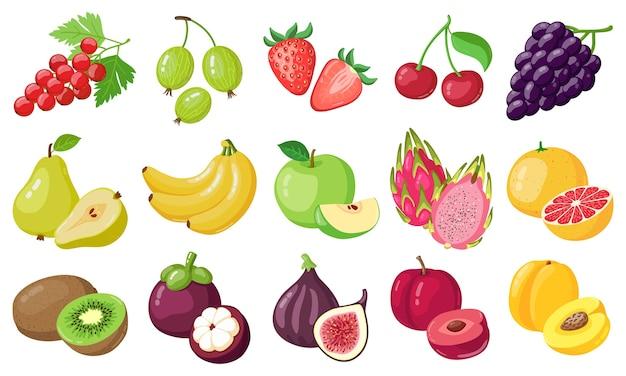 Sélection De Divers Fruits Vecteur Premium