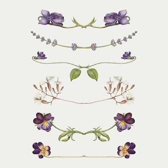 Séparateur de fleurs violettes s'épanouir ensemble vectoriel, remix du livre modèle de calligraphie joris hoefnagel et georg bocskay