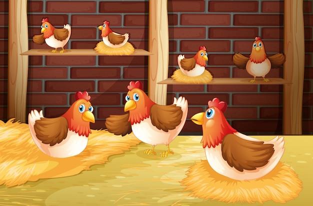 Les sept poules