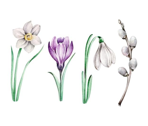 Ser de fleurs de printemps isolé sur blanc