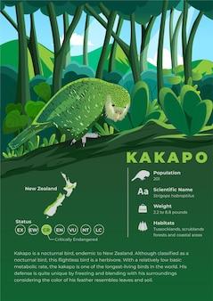 Série D'infographie Animale - Kakapo Vecteur Premium