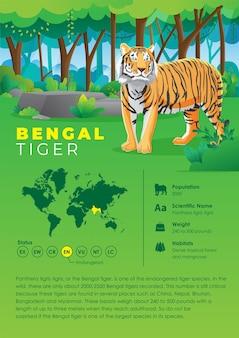 Série D'infographie Animale - Tigre Du Bengale Vecteur Premium