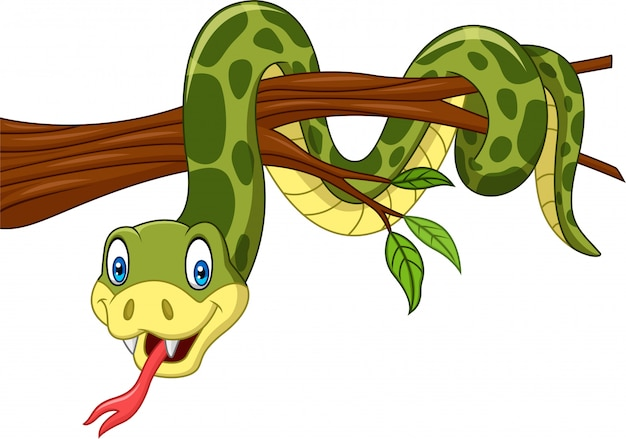 Serpent vert sur une branche d'arbre
