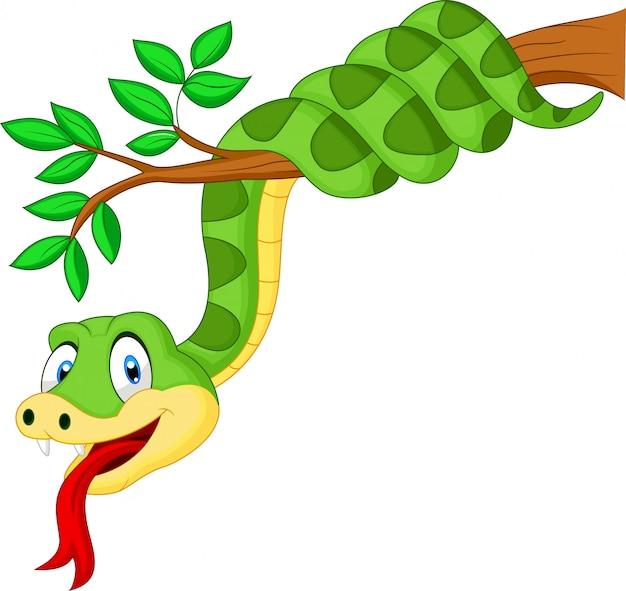 Serpent vert sur une branche